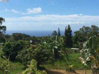 1133  Upper Ulumalu Rd  , Haiku, HI 96708 (MLS #361221) :: Elite Pacific Properties LLC