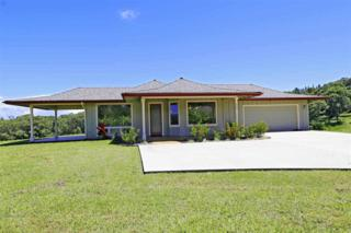 906  Hoomalolo Rd  , Haiku, HI 96708 (MLS #361874) :: Elite Pacific Properties LLC