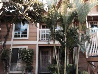 140  Uwapo Rd  15-204, Kihei, HI 96753 (MLS #362377) :: Elite Pacific Properties LLC