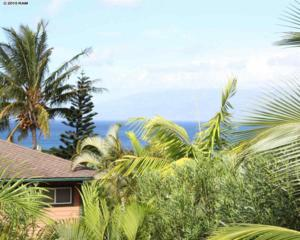 11  Poinciana Rd  , Lahaina, HI 96761 (MLS #362875) :: Elite Pacific Properties LLC