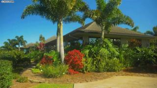 57  Oheala Pl  , Makawao, HI 96768 (MLS #363163) :: Elite Pacific Properties LLC