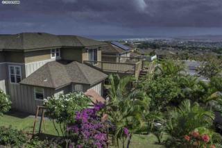 17  Maka Hou Loop  , Wailuku, HI 96793 (MLS #363236) :: Elite Pacific Properties LLC