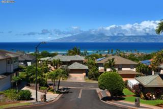 20  Lily Pl  , Lahaina, HI 96761 (MLS #364160) :: Elite Pacific Properties LLC