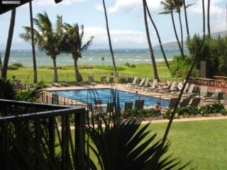 49 W Lipoa St  217, Kihei, HI 96753 (MLS #364471) :: Elite Pacific Properties LLC