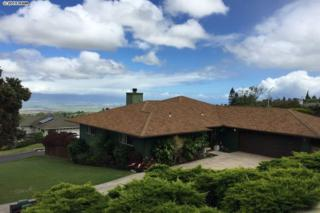 25  Kulamanu  , Kula, HI 96790 (MLS #364971) :: Elite Pacific Properties LLC