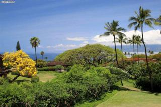 150  Puukolii Rd  58, Lahaina, HI 96761 (MLS #365046) :: Elite Pacific Properties LLC