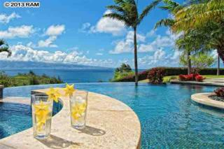 102  Honolua Pl  , Lahaina, HI 96761 (MLS #356825) :: Elite Pacific Properties LLC
