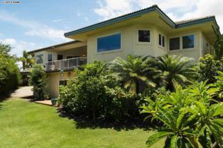 316  Pualoa Nani Pl  , Kihei, HI 96753 (MLS #360541) :: Elite Pacific Properties LLC