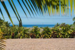 533-2  Mikioi Pl  , Kihei, HI 96753 (MLS #361346) :: Elite Pacific Properties LLC