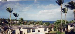 120  Hui Rd F  11 B, Lahaina, HI 96761 (MLS #363519) :: Elite Pacific Properties LLC