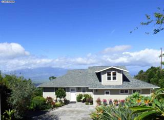 34  Meakoho Pl  , Kula, HI 96790 (MLS #363833) :: Elite Pacific Properties LLC