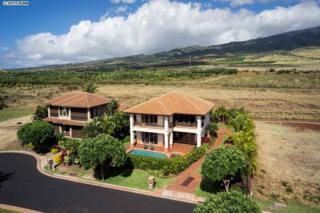 183  Welau  Ke Alii Lot Sub, Lahaina, HI 96761 (MLS #363491) :: Elite Pacific Properties LLC