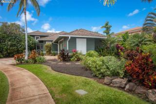 384  Kualono Pl  , Wailea/Makena, HI 96753 (MLS #359629) :: Elite Pacific Properties LLC