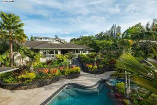 60  Mauu Pl  , Haiku, HI 96708 (MLS #360834) :: Elite Pacific Properties LLC