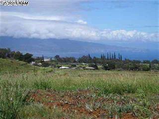 1  Piiholo Rd  Parcel 9, Makawao, HI 96768 (MLS #364005) :: Elite Pacific Properties LLC