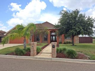 3305  Temple Drive  , Edinburg, TX 78541 (MLS #176474) :: The Ryan & Brian Team of Experts Advisors