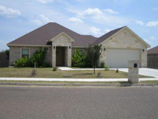 2005  Clavele Street  , Mission, TX 78572 (MLS #176844) :: DaVinci Real Estate