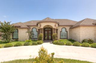 1410  Vida Grande  , Alamo, TX 78516 (MLS #176921) :: The Ryan & Brian Team of Experts Advisors