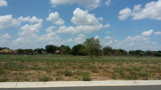7312  34th Street  , Mcallen, TX 78504 (MLS #178066) :: DaVinci Real Estate