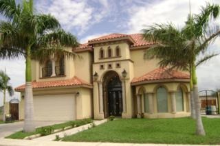 2601  Kumquat Street  , Hidalgo, TX 78557 (MLS #178084) :: DaVinci Real Estate