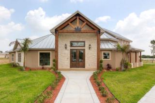 1810  Jim Schroeder Street  , Mission, TX 78572 (MLS #178321) :: The Deldi Ortegon Group and Keller Williams Realty RGV