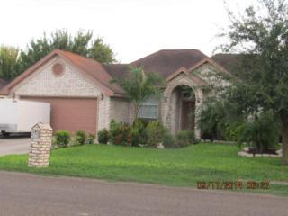 1601 W Tierra Linda Circle  , Palmview, TX 78572 (MLS #178460) :: DaVinci Real Estate