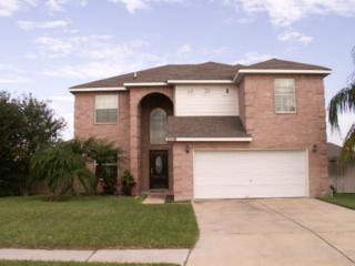 2219  Webster Drive  , Edinburg, TX 78541 (MLS #179900) :: DaVinci Real Estate