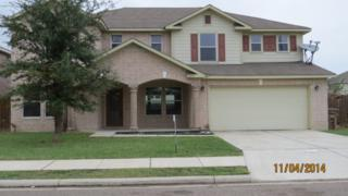 Edinburg, TX 78539 :: The Deldi Ortegon Group and Keller Williams Realty RGV