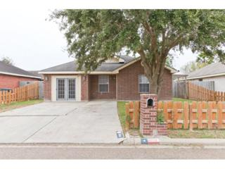 3005  Brenda  , Edinburg, TX 78541 (MLS #181961) :: DaVinci Real Estate