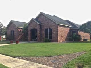 1201  Bella Vista Avenue  , Palmview, TX 78572 (MLS #182288) :: The Deldi Ortegon Group and Keller Williams Realty RGV