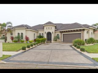 2220  Rhin Drive  4, Edinburg, TX 78539 (MLS #182737) :: DaVinci Real Estate