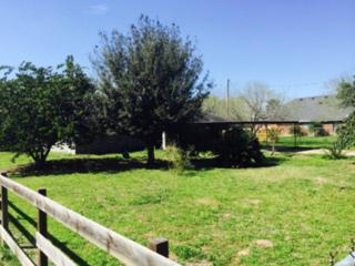 16201 N Eubanks Road  , Edinburg, TX 78501 (MLS #183085) :: DaVinci Real Estate