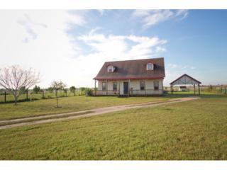 15921 E Mile 20  , Edinburg, TX 78542 (MLS #183105) :: DaVinci Real Estate