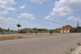 3723 S Border Avenue  , Weslaco, TX 78596 (MLS #183317) :: DaVinci Real Estate