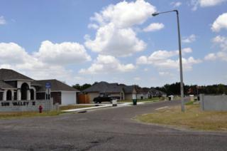 1009  Sunny Drive  , Weslaco, TX 78596 (MLS #183321) :: DaVinci Real Estate
