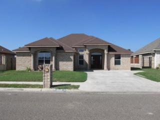 908  Montecruz Street  , Mission, TX 78574 (MLS #183369) :: DaVinci Real Estate
