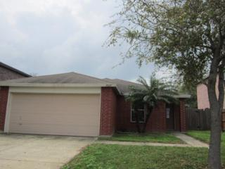 7017 N 40th Street  , Mcallen, TX 78504 (MLS #183370) :: The Ryan & Brian Team of Experts Advisors