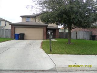 6311  19th Lane  , Mcallen, TX 78504 (MLS #183466) :: DaVinci Real Estate