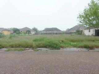 709  Ficus Street  , La Joya, TX 78560 (MLS #183467) :: DaVinci Real Estate
