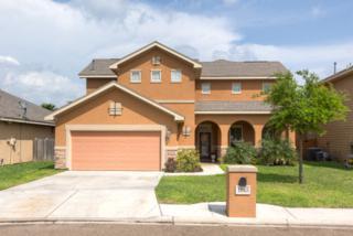 1803  Battista Street  , Edinburg, TX 78542 (MLS #183468) :: DaVinci Real Estate