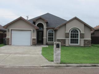 5918  Reymundo Street  , Edinburg, TX 78541 (MLS #183970) :: The Deldi Ortegon Group and Keller Williams Realty RGV