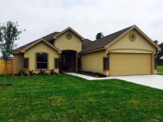 3112  Indian Creek Avenue  Lot 61, Mcallen, TX 78504 (MLS #184300) :: The Deldi Ortegon Group and Keller Williams Realty RGV