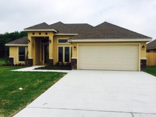 3116  Indian Creek Avenue  Lot 62, Mcallen, TX 78504 (MLS #184301) :: The Deldi Ortegon Group and Keller Williams Realty RGV