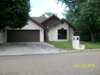 2101  Mockingbird  , Edinburg, TX 78542 (MLS #185172) :: DaVinci Real Estate