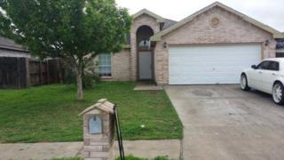 4601  Robin Avenue  , Mcallen, TX 78504 (MLS #185247) :: DaVinci Real Estate