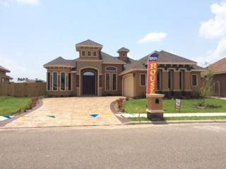 3213  Crimson  , Mission, TX 78573 (MLS #185282) :: DaVinci Real Estate