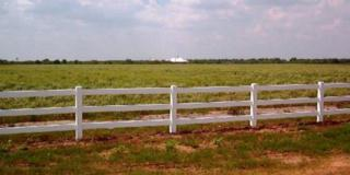 Lot 178  Black Buck Drive  , Edinburg, TX 78541 (MLS #185349) :: DaVinci Real Estate