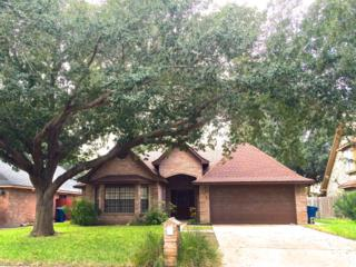 6013 N 27th Street  , Mcallen, TX 78504 (MLS #180551) :: DaVinci Real Estate