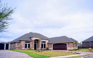 10213 N 26th Street  , Mcallen, TX 78504 (MLS #183172) :: DaVinci Real Estate