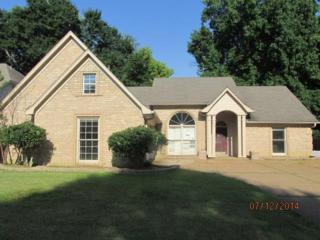 2627  Twisted Oak  , Memphis, TN 38016 (#9931400) :: All Stars Realty